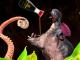 Hippo eating sushi bewerkt