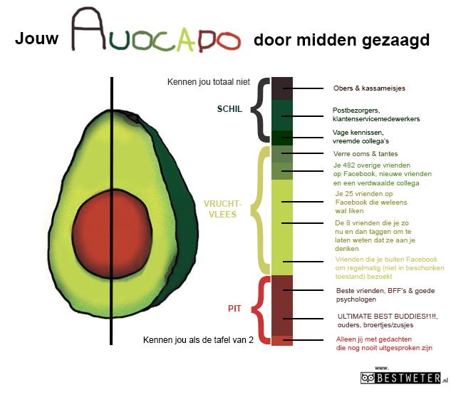 avocado binnenkant door midden gesneden