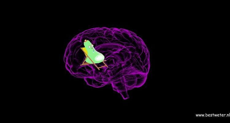 Synaps in hersenen op strandstoel Bestweter