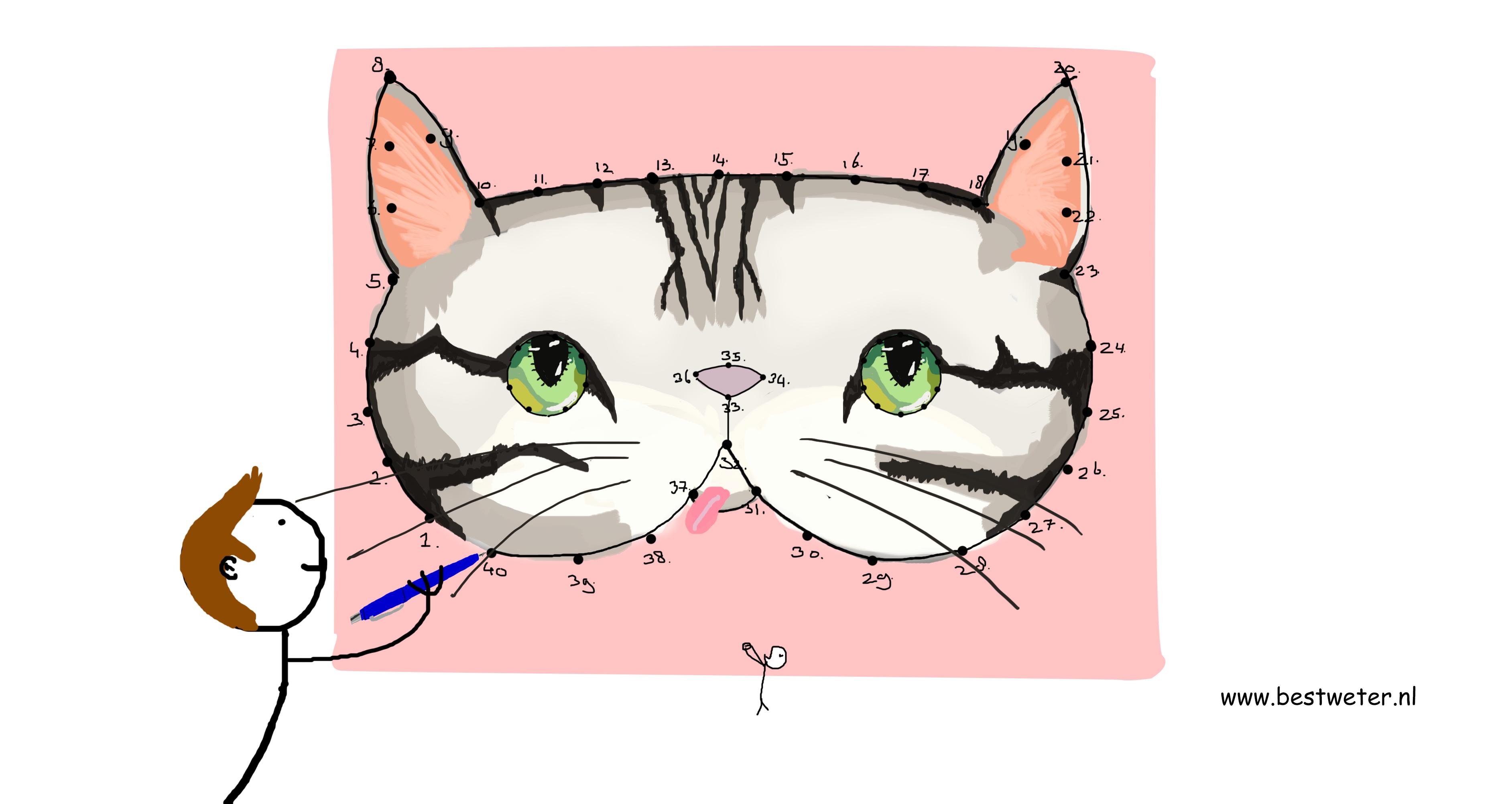 kattenhoofd getekend illustratie